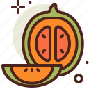 cantaloupe, food, fresh, healthy, juice icon