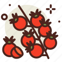 cherry, food, fresh, healthy, juice, tomato icon