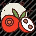 cranberry, food, fresh, healthy, juice