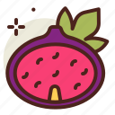 fig, food, fresh, healthy, juice icon