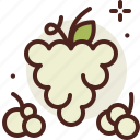 food, fresh, grapes, green, healthy, juice icon