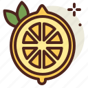 food, fresh, healthy, juice, lemon icon