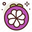 food, fresh, healthy, juice, mangosteen icon
