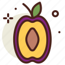 food, fresh, healthy, juice, plum icon