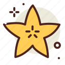 food, fresh, healthy, juice, starfruit icon