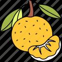 lemon, fruit, citrus