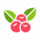 berries, berry, cherries, cherry, fruit icon
