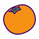 citrus, fruit, mandarin icon
