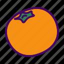 citrus, fruit, mandarin