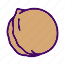 food, nut, walnut icon