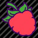 berry, food, raspberries, raspberry icon