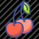 cherry, food, fruit, organic, vegetarian