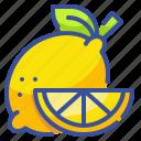 food, fruit, lemon, organic, vegetarian icon