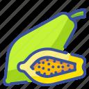 food, fruit, organic, papaya, vegetarian icon