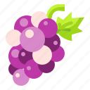 food, fruit, grapes, organic, vegetarian icon