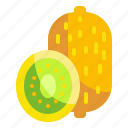 food, fruit, kiwi, organic, vegetarian icon