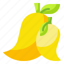 food, fruit, mango, organic, vegetarian icon