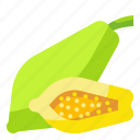 food, fruit, organic, papaya, vegetarian icon