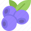 blueberries, food, fruit, healthy, organic icon