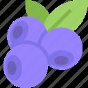 blueberries, food, fruit, healthy, organic