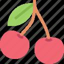cherries, cherry, food, fruit, healthy, organic