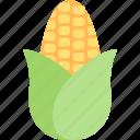 corn, food, healthy, organic, popcorn