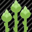 food, healthy, leaves, organic, plants