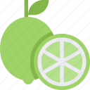 lemon, sour, food, organic, lime, healthy icon