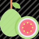 food, fruit, healthy, organic, pear