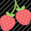 food, fruit, healthy, organic, strawberries icon