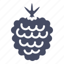berry, fruit, raspberry icon