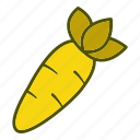 carrot, diet, eating, food, healthy, organic, vegetables icon