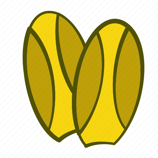 chicory, diet, eating, food, healthy, organic, vegetables icon