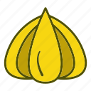 food, garlic, organic, vegetables icon