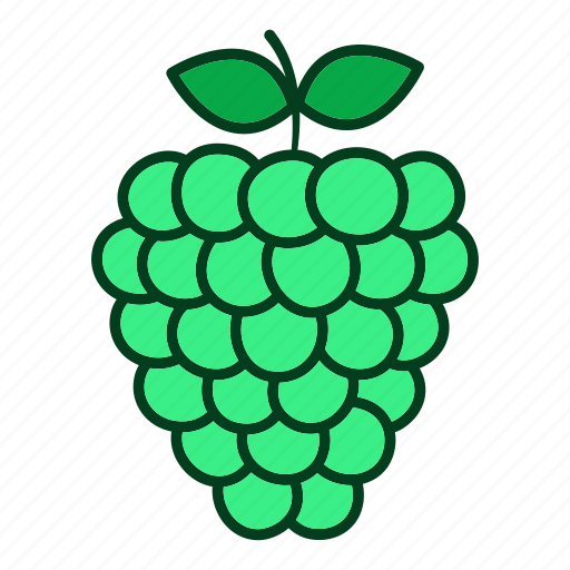 diet, eating, food, fruits, healthy, organic, raspberry icon