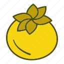 diet, eating, food, healthy, organic, tomato, vegetables icon