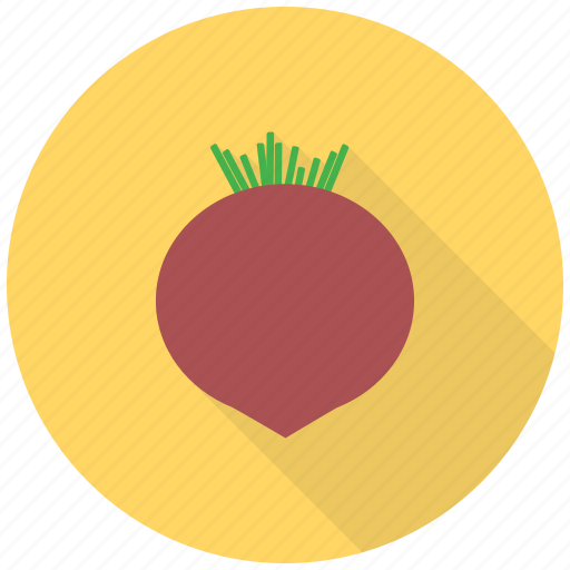 beet, beets, food, fresh, healthy, root, vegetable icon