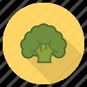 broccoli, food, fresh, healthy, vegetable, veggie
