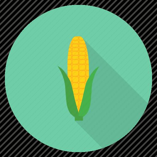 corn, food, fresh, healthy, staple, sweet, vegetable icon