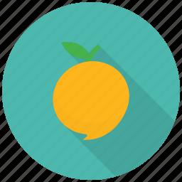 food, fruit, healthy, juicy, mango, pulp, vitamins icon