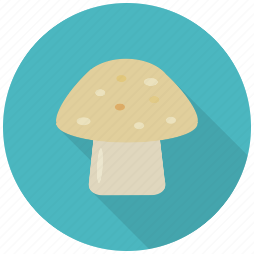 eat, food, healthy, mushroom, plant, vegetable, vitamin d icon