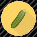 food, fresh, gourd, healthy, squash, vegetable, zucchini