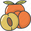 cooking, food, fruit, fruits, healthy, kitchen, peach icon