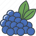 blueberries, cooking, food, fruit, fruits, organic, tropical icon