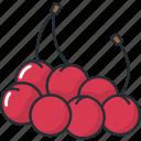 cherries, fruit, fruits, healthy, organic, sweet, vegetable