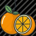 cooking, food, fruit, fruits, healthy, juice, orange