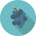 blue, dark, food, fruit, grape, grapes, organic, wine icon