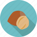 food, fruit, hazelnut, nut, organic icon