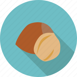 food, fruit, hazelnut, nut, organic icon