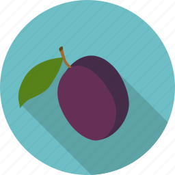 drupe, drupe fruit, food, fruit, leaf, plum icon